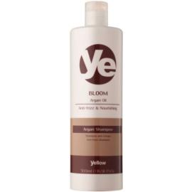 Alfaparf Milano Yellow Bloom Shampoo mit ernährender Wirkung gegen strapaziertes Haar  500 ml