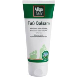 Allga San Feet & Leg kosodřevinový balzám na chodidla  100 ml