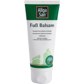 Allga San Feet & Leg Zwergkieferbalsam für die Füße  100 ml