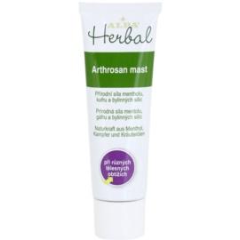 Alpa Herbal unguent pentru tratament local, pentru durere acută și cronică  30 g