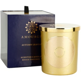 Amouage Autumn Leaves ароматизована свічка  195 гр