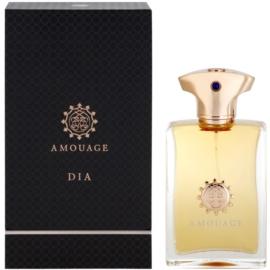 Amouage Dia parfémovaná voda pro muže 100 ml