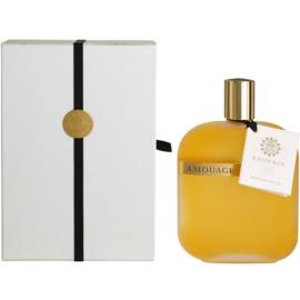 Amouage Opus I Eau De Parfum unisex 100 ml