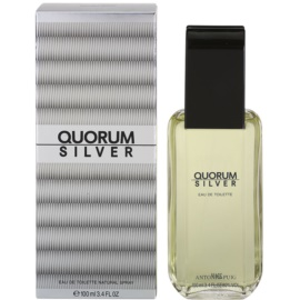 Antonio Puig Quorum Silver Eau de Toilette für Herren 100 ml