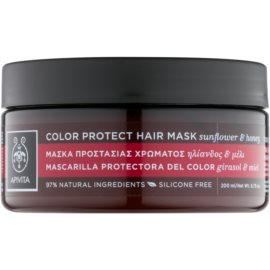 Apivita Holistic Hair Care Sunflower & Honey Maske zum Schutz der Farbe  200 ml