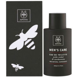 Apivita Men's Care Cedar & Cardamom eau de toilette férfiaknak 100 ml