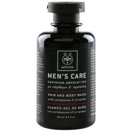Apivita Men's Care Cardamom & Propolis Hair and Body Wash 250 ml