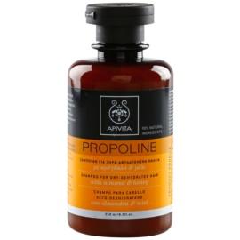 Apivita Holistic Hair Care Almond & Honey sampon pentru par uscat  250 ml