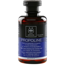Apivita Holistic Hair Care Lupin & Rosemary  tönendes Shampoo gegen schütteres Haar für Herren  250 ml