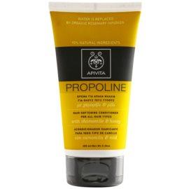 Apivita Holistic Hair Care Chamomile & Honey kondicionér pro všechny typy vlasů  150 ml