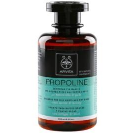 Apivita Holistic Hair Care Nettle & Honey sampon zsíros fejbőrre és száraz hajvégekre  250 ml