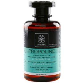 Apivita Holistic Hair Care Nettle & Honey šampon pro mastnou vlasovou pokožku a suché konečky  250 ml