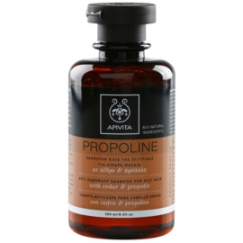Apivita Holistic Hair Care Cedar & Propolis shampoing antipelliculaire pour cheveux gras  250 ml