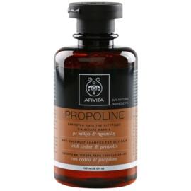 Apivita Holistic Hair Care Cedar & Propolis szampon przeciwłupieżowy do włosów przetłuszczających  250 ml