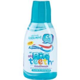 Aquafresh Big Teeth elixir bocal para crianças  Fresh Mint  300 ml