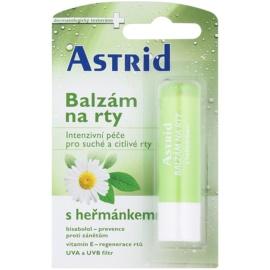 Astrid Lip Care baume à la camomille pour les lèvres sèches et sensibles  effet régénérant  4,8 g