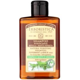 Athena's l'Erboristica Erboristica březový šampon s mátou na mastné vlasy  300 ml