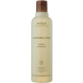 Aveda Rosemary Mint šampon pro jemné až normální vlasy  250 ml
