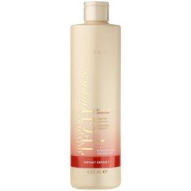 Avon Advance Techniques Instant Repair 7 champô regenerador com queratina para cabelos danificados  400 ml
