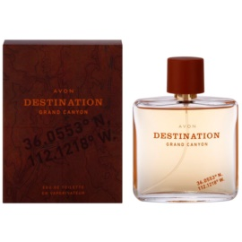 Avon Destination Grand Canyon Eau de Toilette para homens 75 ml