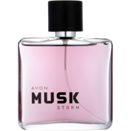 Avon Musk Storm Eau de Toilette für Herren 75 ml