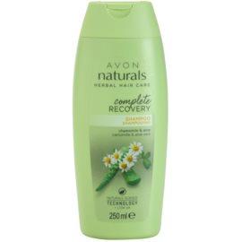 Avon Naturals Herbal regeneracijski šampon z kamilico  250 ml