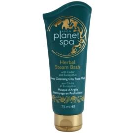 Avon Planet Spa Herbal Steam Bath маска з глини для глибокого очищення з кедром та евкаліптом  75 мл