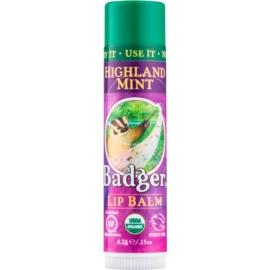 Badger Classic Highland Mint balsam do ust  4,2 g