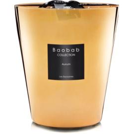 Baobab Les Exclusives Aurum świeczka zapachowa  16 cm