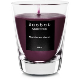 Baobab Miombo Woodlands bougie parfumée   (votive)