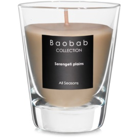 Baobab Serengeti Plains vonná svíčka   (votivní)
