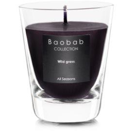 Baobab Wild Grass bougie parfumée   (votive)