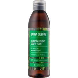 Barwa Herbal Horsetail šampon proti izpadanju las  250 ml