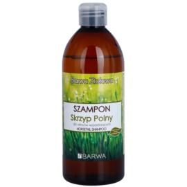 Barwa Herbal Horsetail champô anti-queda capilar  480 ml