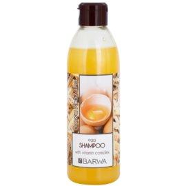 Barwa Natural Egg sampon pentru regenerare pentru par deteriorat  300 ml
