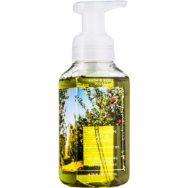 Bath & Body Works Afternoon Apple Picking Schaumseife zur Handpflege  259 ml