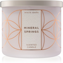Bath & Body Works Mineral Springs Scented Candle 411 g