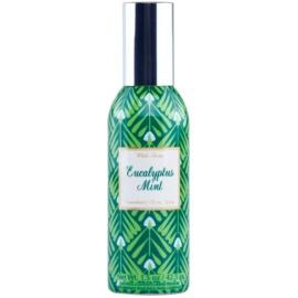 Bath & Body Works Eucalyptus Mint Raumspray 42,5 g