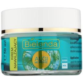 Bielenda Sea Algae Moisturizing Creme gegen die ersten Zeichen von Hautalterung 40+  50 ml
