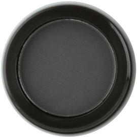 Billion Dollar Brows Color & Control pudra pentru nuantare pentru sprancene culoare Raven 2 g