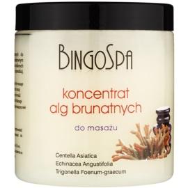 BingoSpa Algae masszázs koncentrátum barna algából  150 g