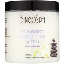 BingoSpa Collagen gelartiges Massagekonzentrat  250 g