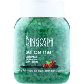 BingoSpa Japanese Pine Scent & Pu-erh Meersalz zum Baden  1350 g