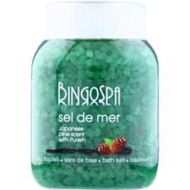 BingoSpa Japanese Pine Scent & Pu-erh morská soľ do kúpeľa  1350 g