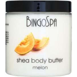BingoSpa Melon shea vaj testre  250 g