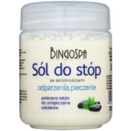 BingoSpa Mint koupelová sůl na nohy se sklonem k otokům  550 g