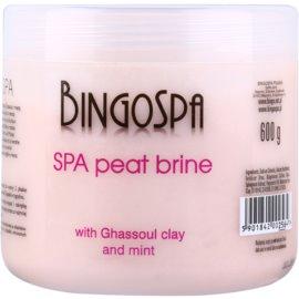 BingoSpa Peat jemná sůl do koupele s marockým jílem a mátou  600 g