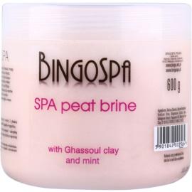 BingoSpa Peat jemná soľ do kúpeľa s marockým ílom a mätou  600 g