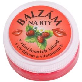 Bione Cosmetics Care balzám na rty příchuť Wild Strawberries 25 ml