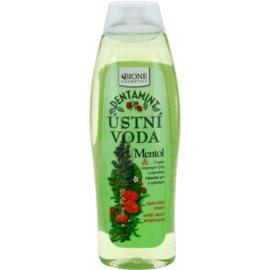 Bione Cosmetics Dentamint Mundwasser Menthol  500 ml